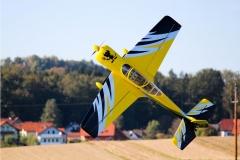 Kastanienfliegen_Prosdorf_2011_023