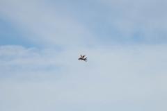 MiG-29_002